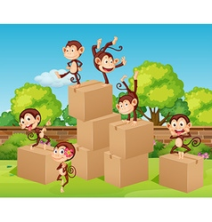 Monkeys climbing up the boxes vector