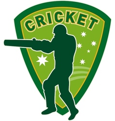 Cricket player batsman australia vector