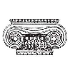 Ionic capital from the erechtheion design and vector