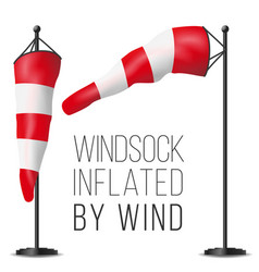 Wind speed flag inflated by wind on a pole vector