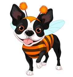 Halloween boston terrier vector