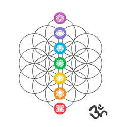 Colorful chakra icons on sacred geometry design vector