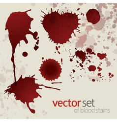 Splattered blood stains set 5 vector