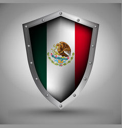 Shield with the mexico flag vector