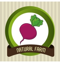 Natural food product g vector