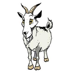 Cartoon image of goat vector