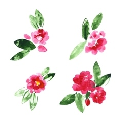 Collection of watercolor camellia flowers vector