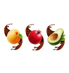 fruit in chocolate splash realistic vector image