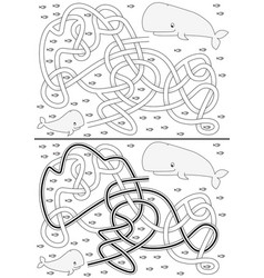 whale maze vector image vector image