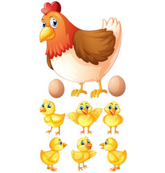 hen and six chicks vector image