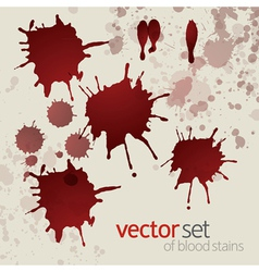 Splattered blood stains set 3 vector image
