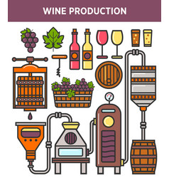 wine production factory or winery winemaking vector image