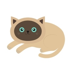 Lying siamese cat in flat design style cute vector