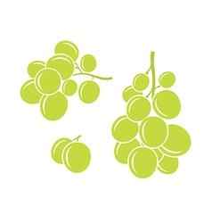 Green grapes vector image vector image