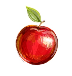 Sketch of red apple in watercolor technique vector