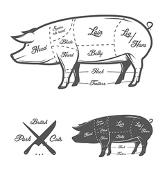 British uk cuts of pork vector