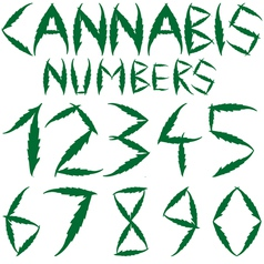 Cannabis numbers vector