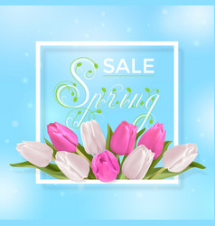 spring sale typography vector image vector image