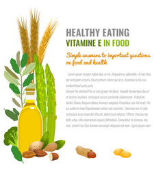 healthy food vitamin e banner vector image