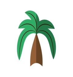 Cartoon green palm coconut beach tree vector