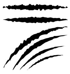 Grunge cat scratches2 vector