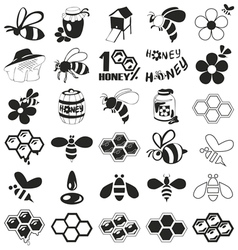 Bee and honey icons on white vector