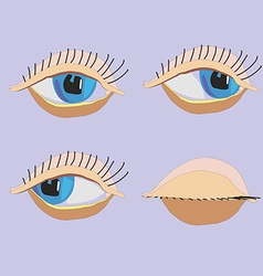 Set eyes vector image vector image