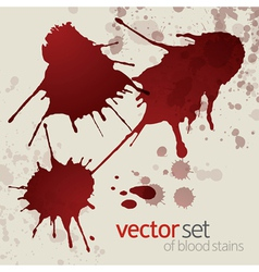 Splattered blood stains set 1 vector image vector image