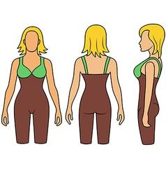 Woman mannequin slimming underwear torso vector