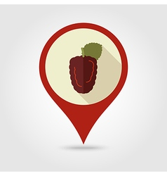 Blackberry bramble flat pin map icon Berry fruit vector image