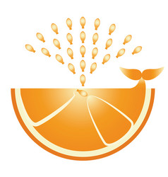 Citrus orange icon flat orange - whale produces vector