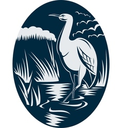Heron wading in the marsh or swamp vector image vector image