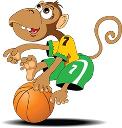 Monkey playing basketball vector