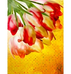 Background with beautiful tulip bouquet EPS 10 vector image