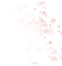Cherry tree falling petal EPS 10 vector image vector image