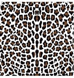 Leopard seamless pattern vector