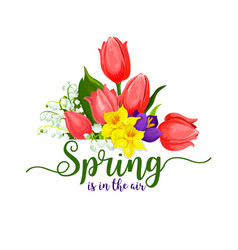 Spring holidays tulips flowers bouquet vector