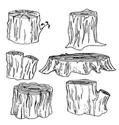 Stump handdrawn set vector