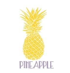 Pineapple tropical fruit object health vector