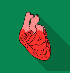Human heart icon in flat style isolated on white vector