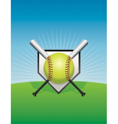 Softball and Bats vector image