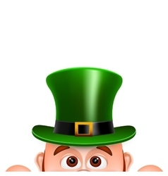 Cartoon Leprechaun in a green hat Card for Saint vector image