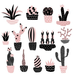 pink cacti 2 in pots vector image vector image
