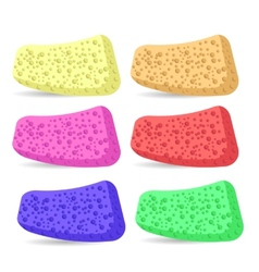 Bath sponges vector