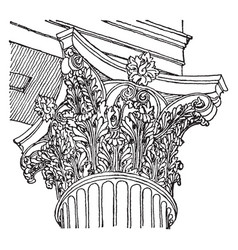 Corinthian capital from the temple of mars vector