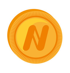 namecoin money golden icon vector image