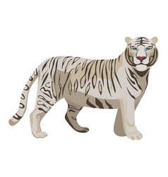 White or bleached tiger isolated on white vector