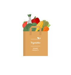 Paper bag with fresh vegetables vector