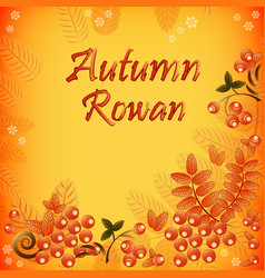 Autumn background with leaves and berries of rowan vector