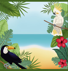 Cockatoo and toucan leaves tropical beach vector